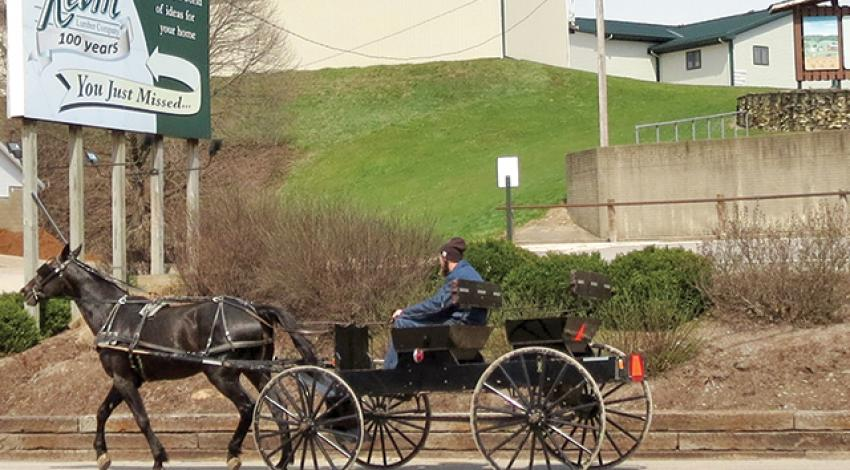 A man rides a horse-drawn carriage.