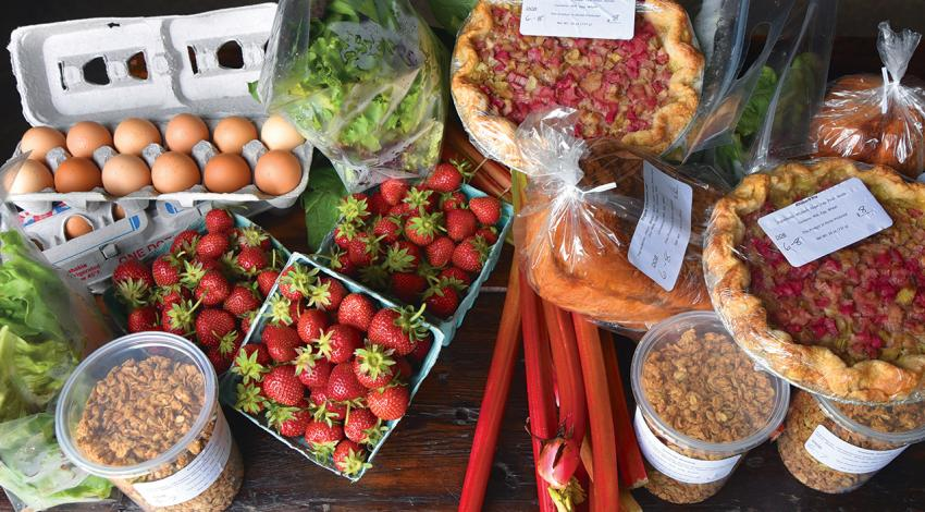 A picture of assorted foods, including strawberries, eggs, lettuce, bread, nuts, and pies.