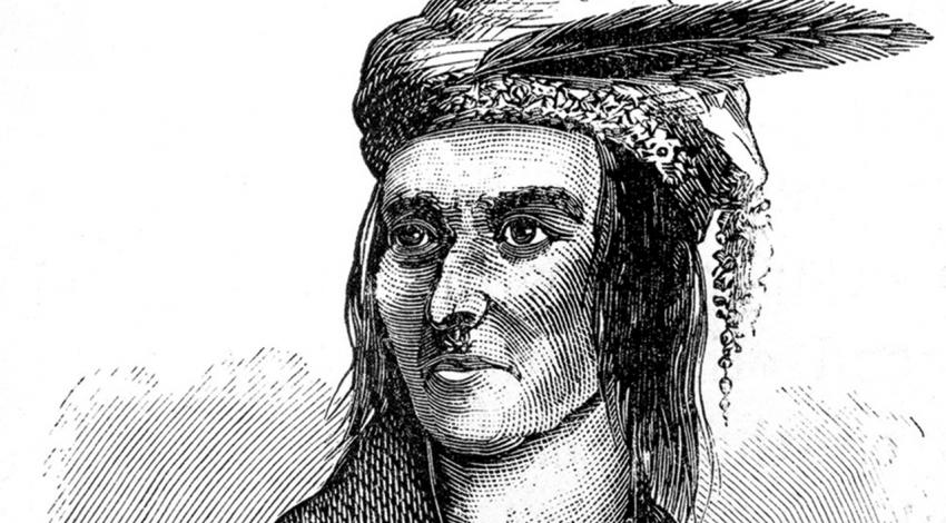 A drawing of Tecumseh staring into the distance