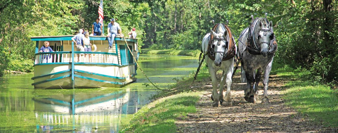 Two horses lead a canal boat down the river