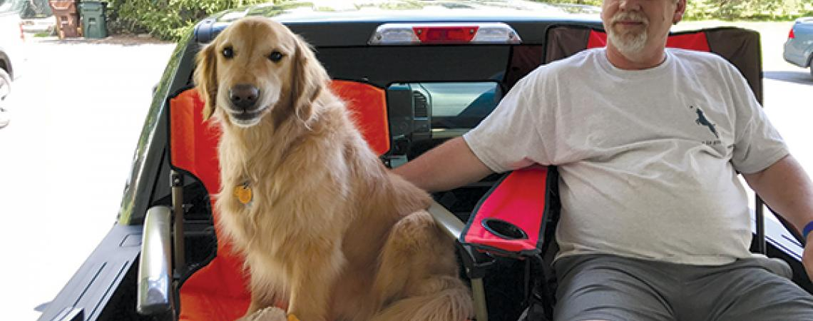 Golden retriever with owner